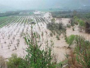 کشاورزان سیلزده همچنان در انتظار کمک / دارایی کشاورزان را آب برد و مسئولان را خواب!