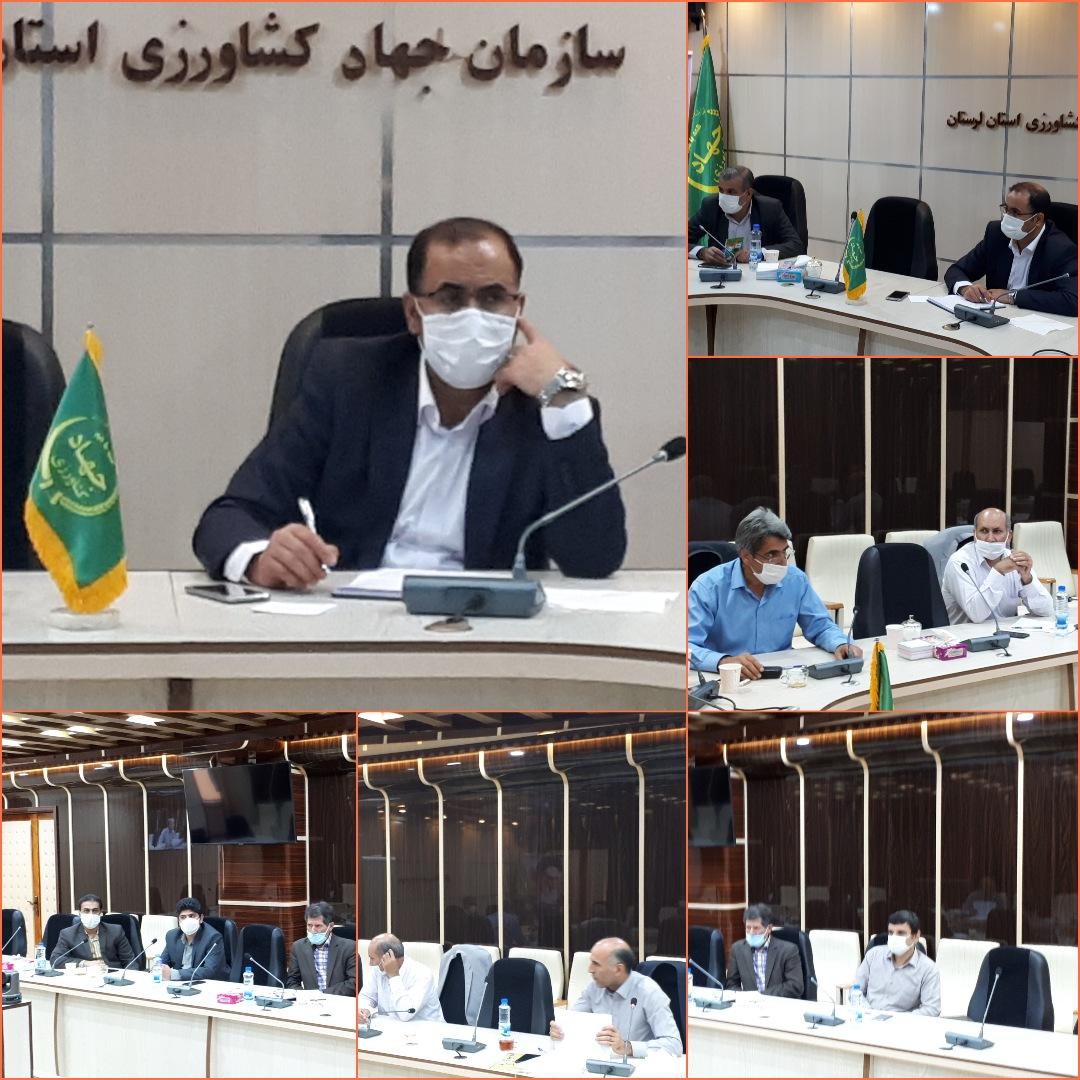 دیدار رئیس سازمان جهاد کشاورزی استان لرستان با مجموعه معاونت بهبود تولیدات دامی سازمان