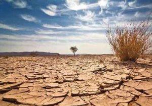 ممنوعیت انتقال آب برای کشت محصولات آبدوست/ اعلام جرم علیه متخلفین